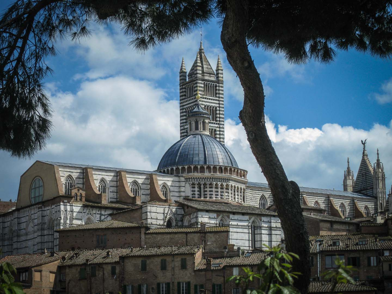 tacchella paolo livorno italy tours - photo#43